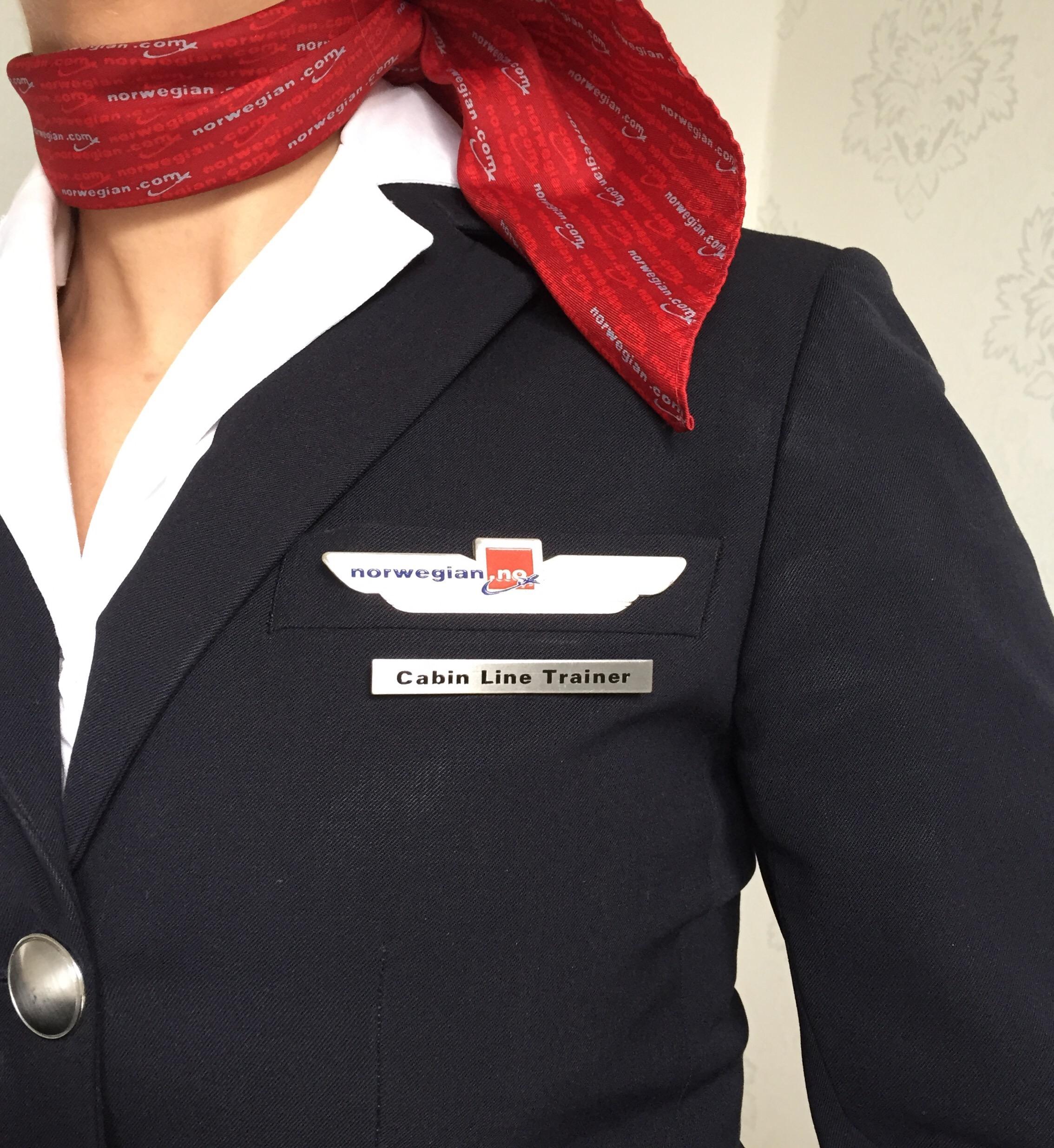cabin line trainer